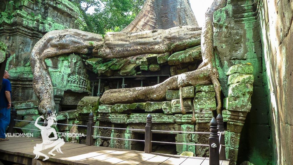 Angkor Wat - 7 vidunder - Siem Reap Cambodia